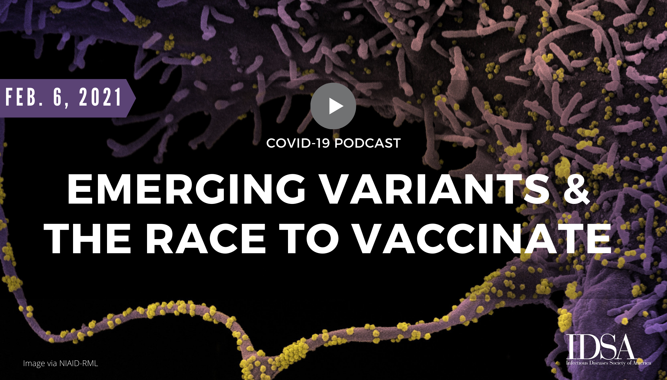 Emerging Variants and the Race to Vaccinate
